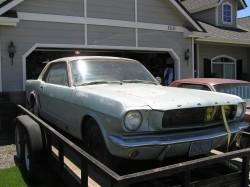 3681964-5.JPG