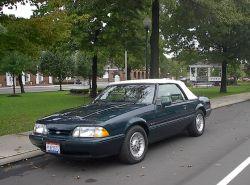JM-Mustang-sm.jpg